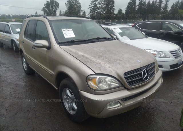 Inventory #428858245 2002 Mercedes-benz ML