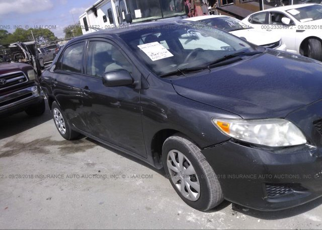Inventory #420027815 2010 Toyota COROLLA
