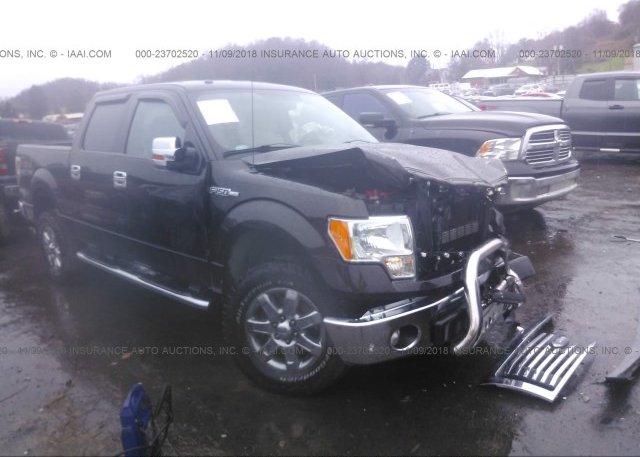 Inventory #499712817 2014 FORD F150