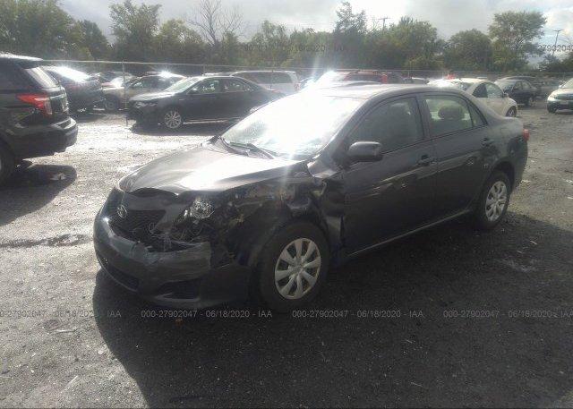 из сша 2010 Toyota COROLLA 2T1BU4EE3AC502341