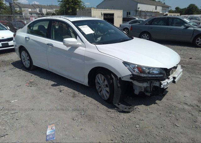 Inventory #766542465 2013 Honda ACCORD