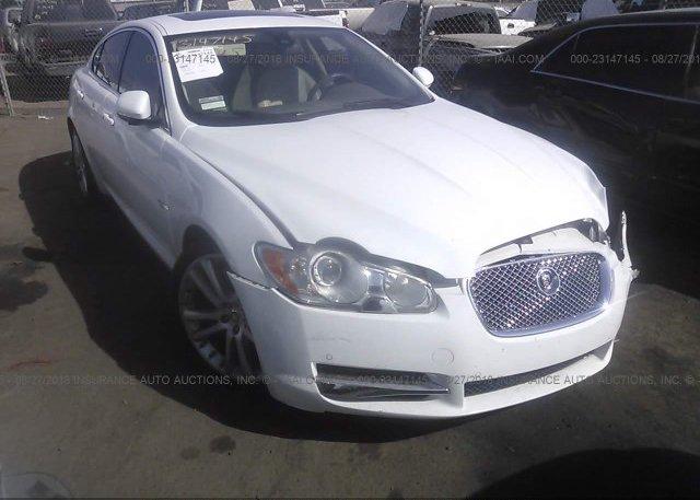 Inventory #425233357 2011 Jaguar XF