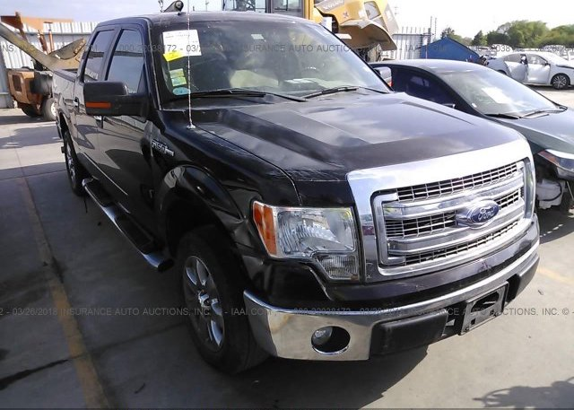 Inventory #830436556 2013 FORD F150