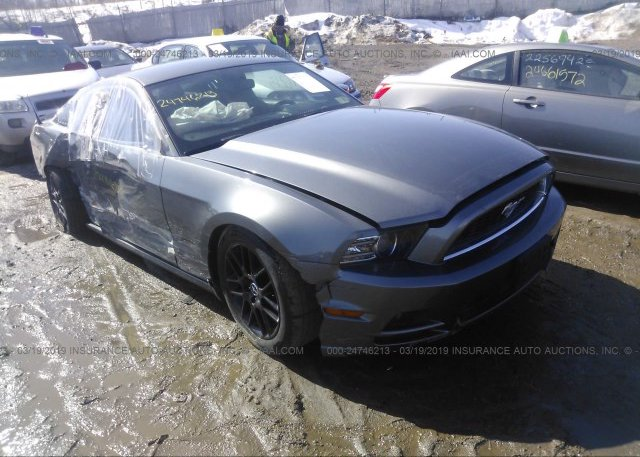 Inventory #832498852 2014 FORD MUSTANG