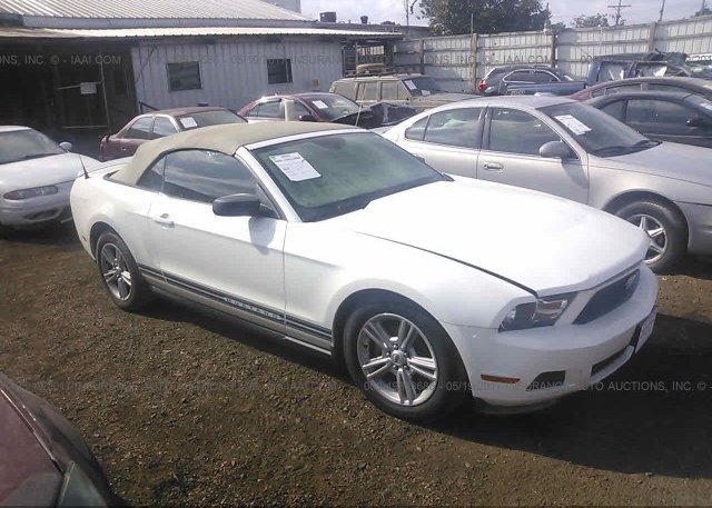 Inventory #566545588 2010 FORD MUSTANG