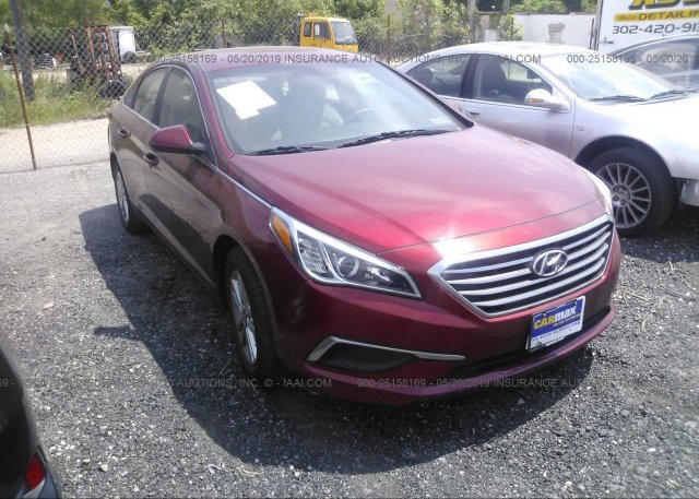 Inventory #566229830 2016 Hyundai SONATA