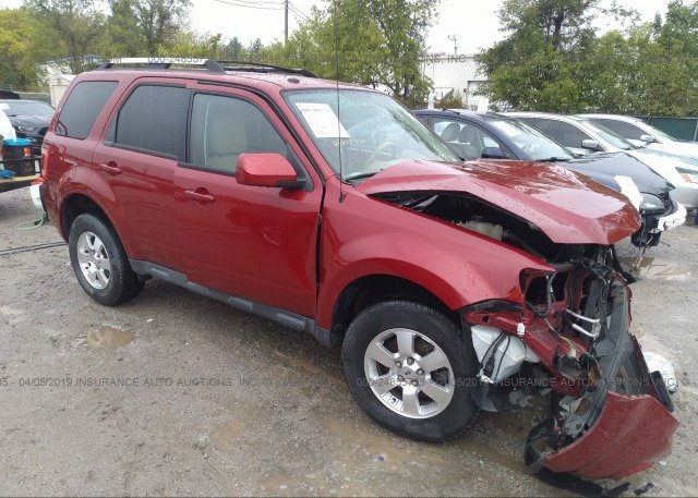 Inventory #158075991 2011 FORD ESCAPE