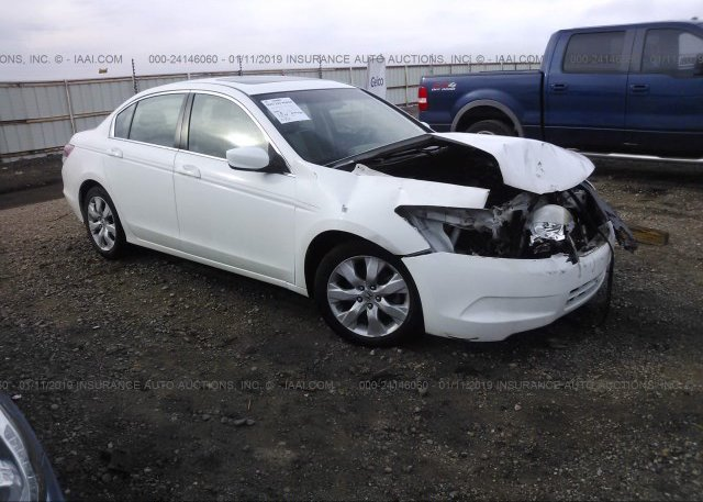 Inventory #714494979 2010 HONDA ACCORD