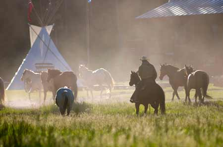 Rounding Up the Horses | Photo: 320 Ranch