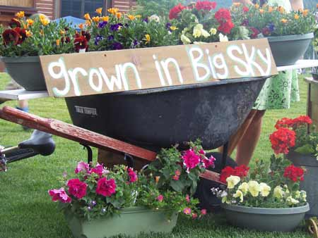 Grown in Big Sky A The Farmers Market | Photo: Big Sky Town Center