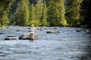 Fly Fishing On The Gallatin | 320 Ranch Photo