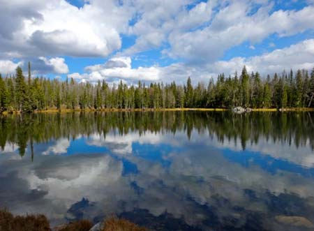 Golden Trout Lakes | Photo: D. Lennon