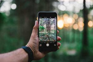 Smartphone In Woods | Pixabay Image