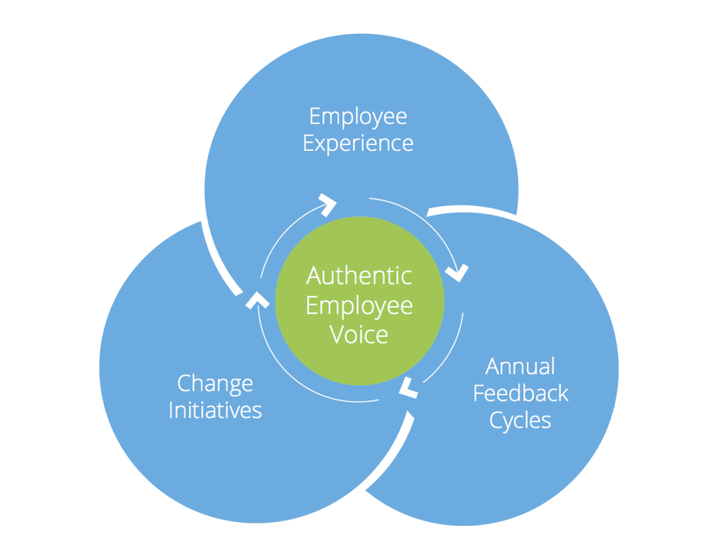 Employee voice is central to employee experience, annual feedback cycles, and change initiatives