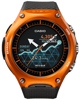 Casio WSD