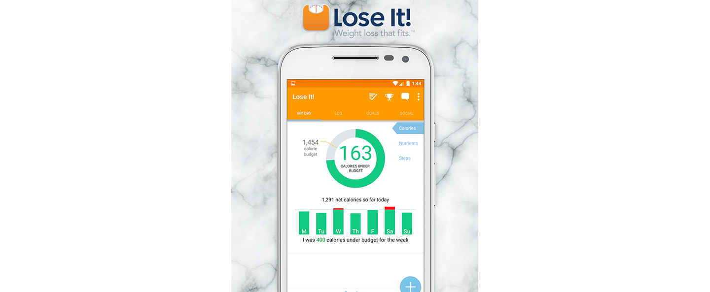 LoseIt! meal tracker app
