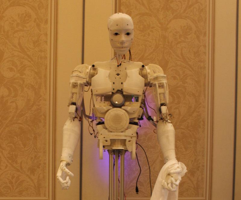 Robot Torse
