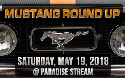 Mustang Round Up