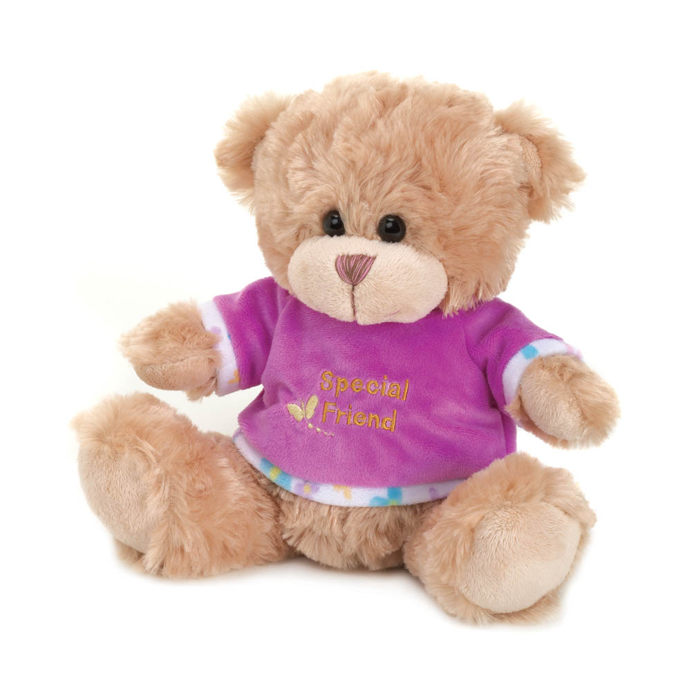 Wholesale Special Friend Plush Bear for sale at  bulk cheap prices!
