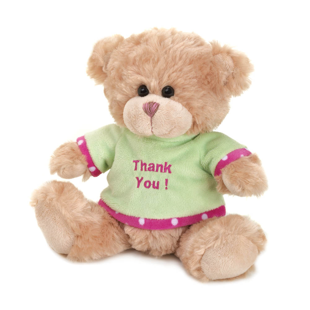 Wholesale Thank You Plush Bear for sale at  bulk cheap prices!