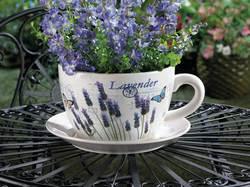 Wholesale Lavender Fields Teacup Planter for sale at bulk cheap prices!