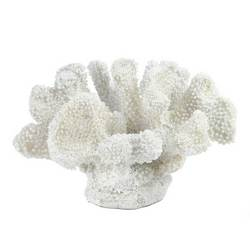 Wholesale Small White Coral Decor for sale at bulk cheap prices!