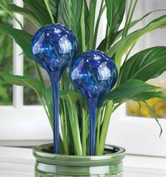 Wholesale Plant Watering Globe Stakes for sale at bulk cheap prices!