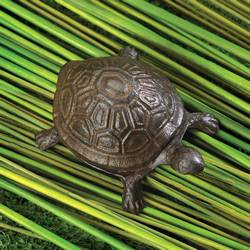 Wholesale Turtle Key Hider for sale at bulk cheap prices!