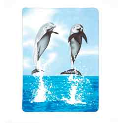 Wholesale Dolphin Fleece Blanket for sale at  bulk cheap prices!