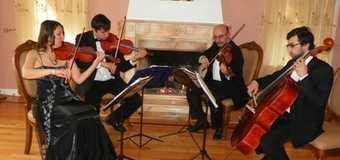 Music Lesson with Bravo String Quartet Memeber
