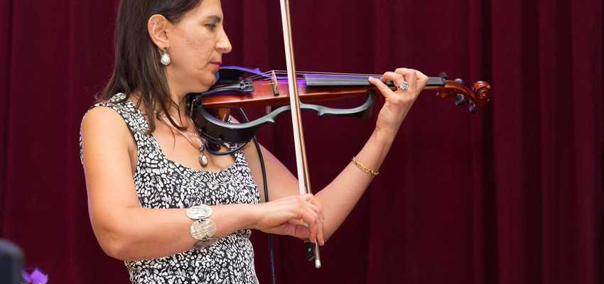 Hrip electric violin