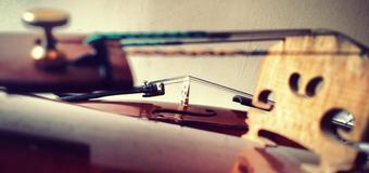 Intro Violin or Viola Lessons