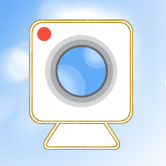 vectorized webcam picture for video conference calls