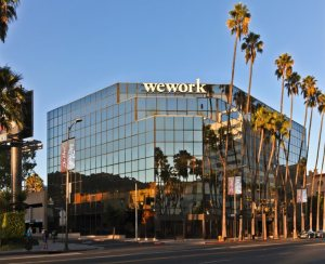 wework shared workspace