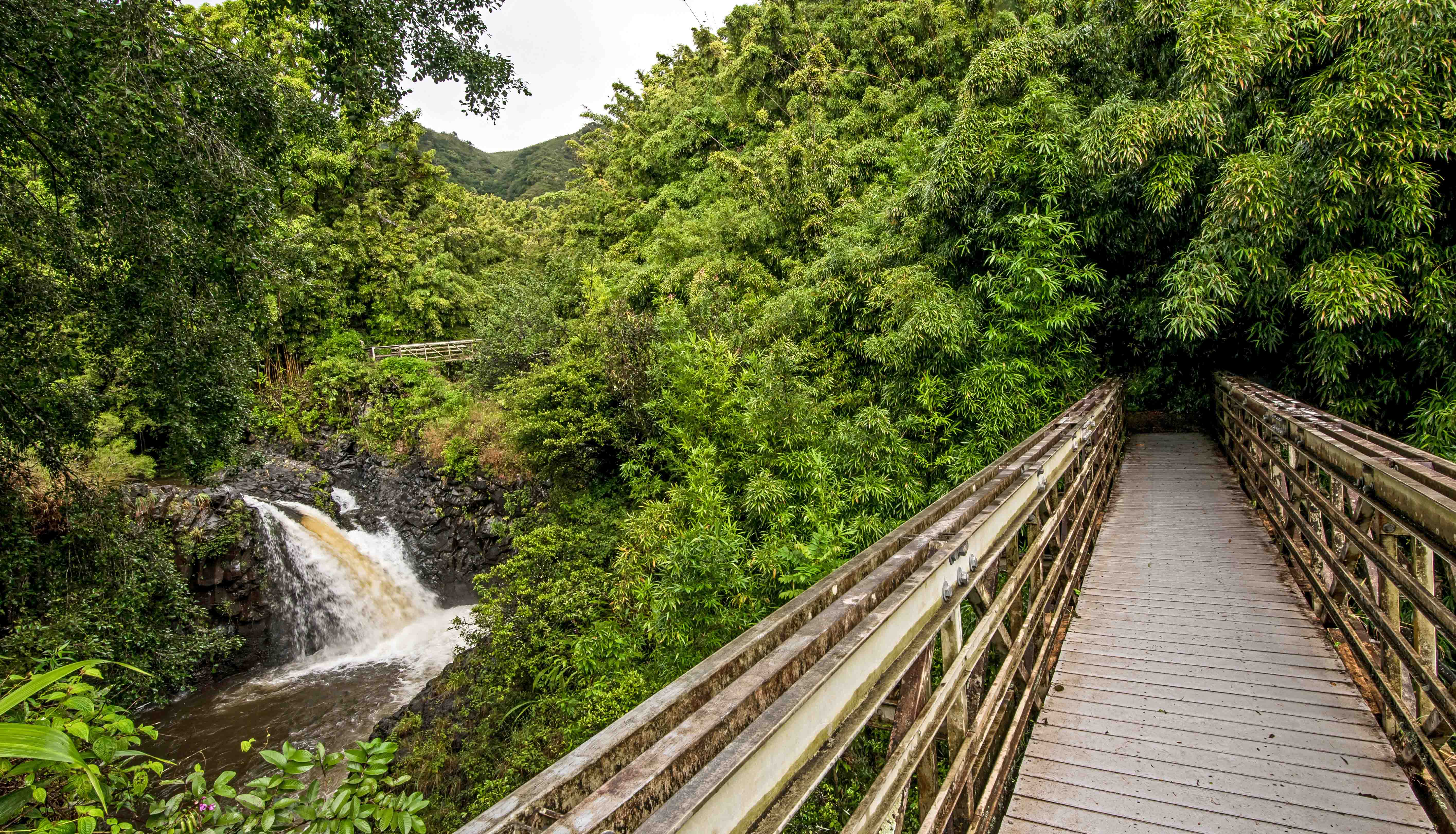 The Pipiwai Trail Bridge leads into the bamboo forest