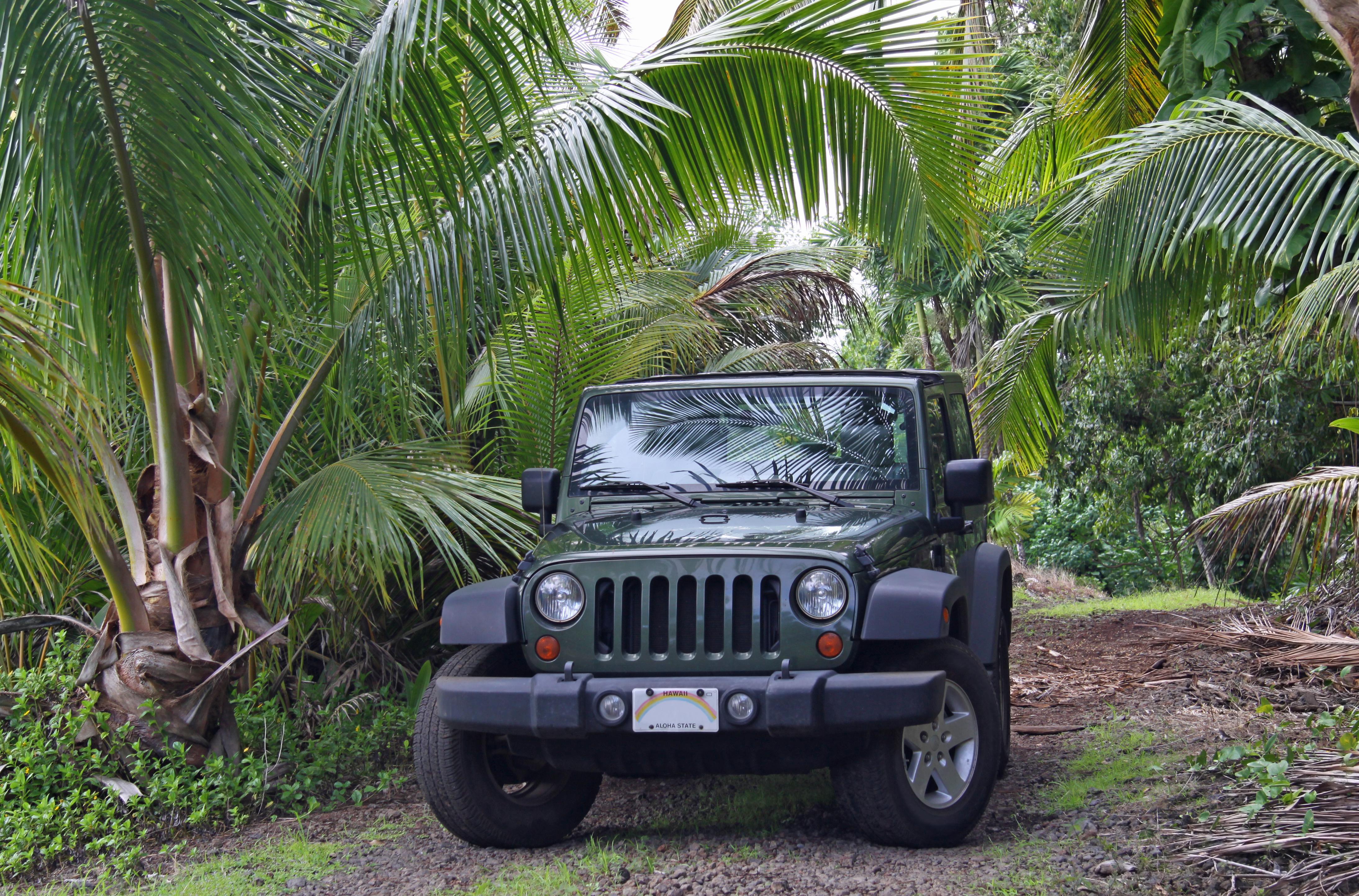 offroad near Hana (Maui, Hawaii)
