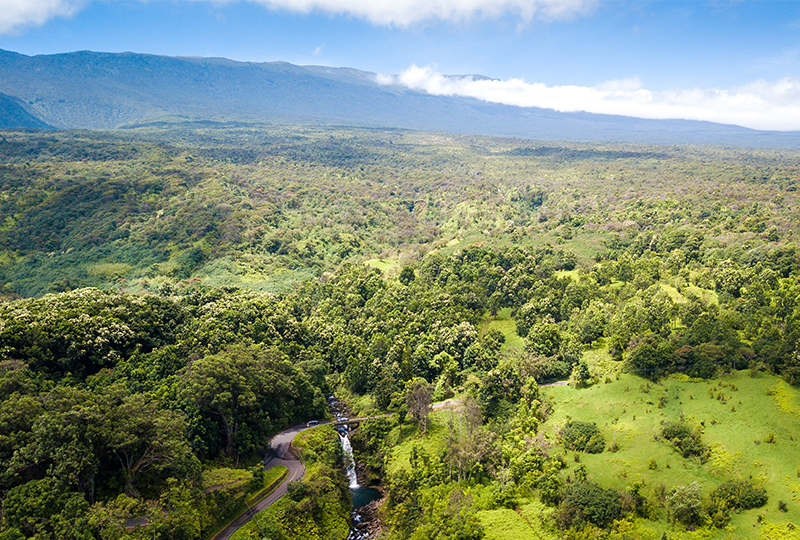 Tour Hana Highway with your family