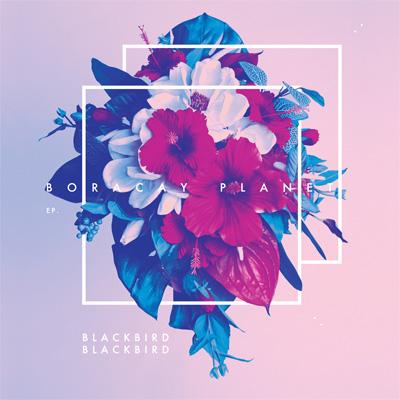 Song of the Day: Blackbird Blackbird -
