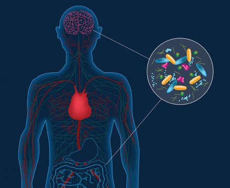 Artist's concept depicting microbes in the gut