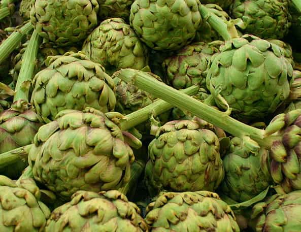 image of artichoke
