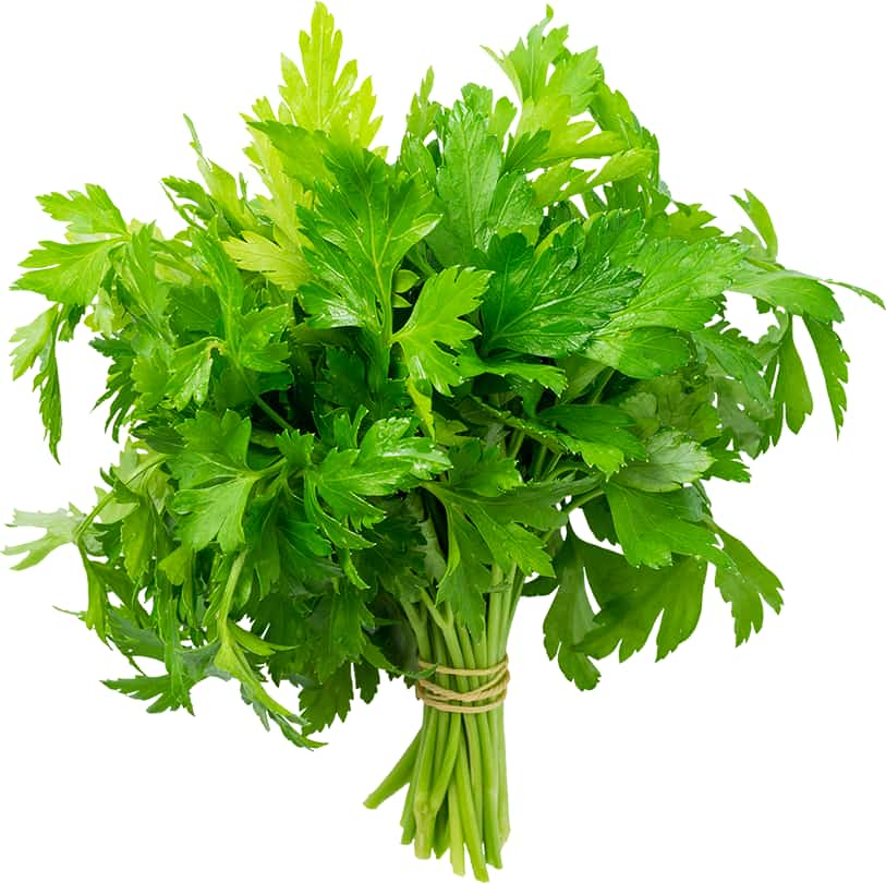Image of parsley