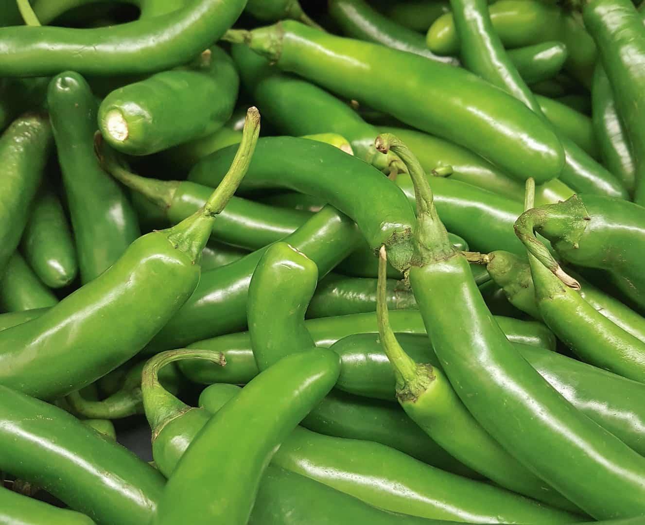 image of serrano pepper