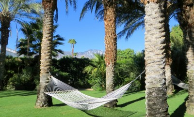 Enjoy a Chic and Glamorous Getaway at the Parker Palm Springs