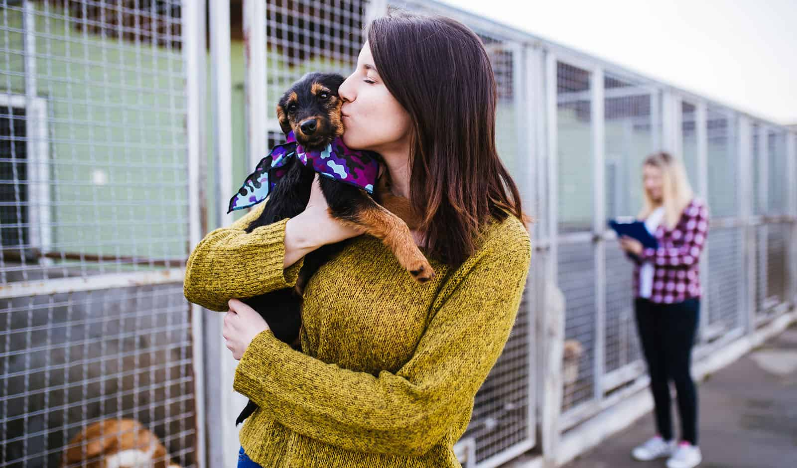 LA Shelter Dogs Might Soon be on a Vegan Diet