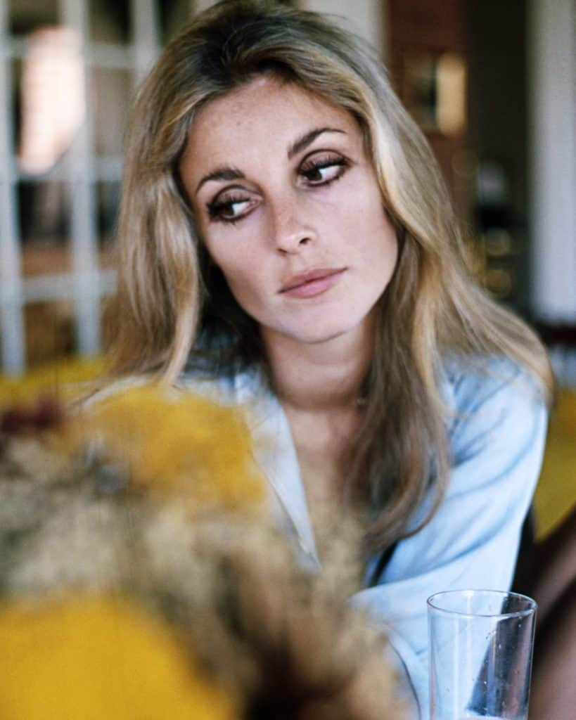 sharon-tate-makeup-tutorial-viva-glam-magazine-katarina-van-derham-marketa-janska