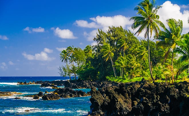 The-Top-10-Things-To-Do-On-Your-Hawaii-Tour-road-to-hana