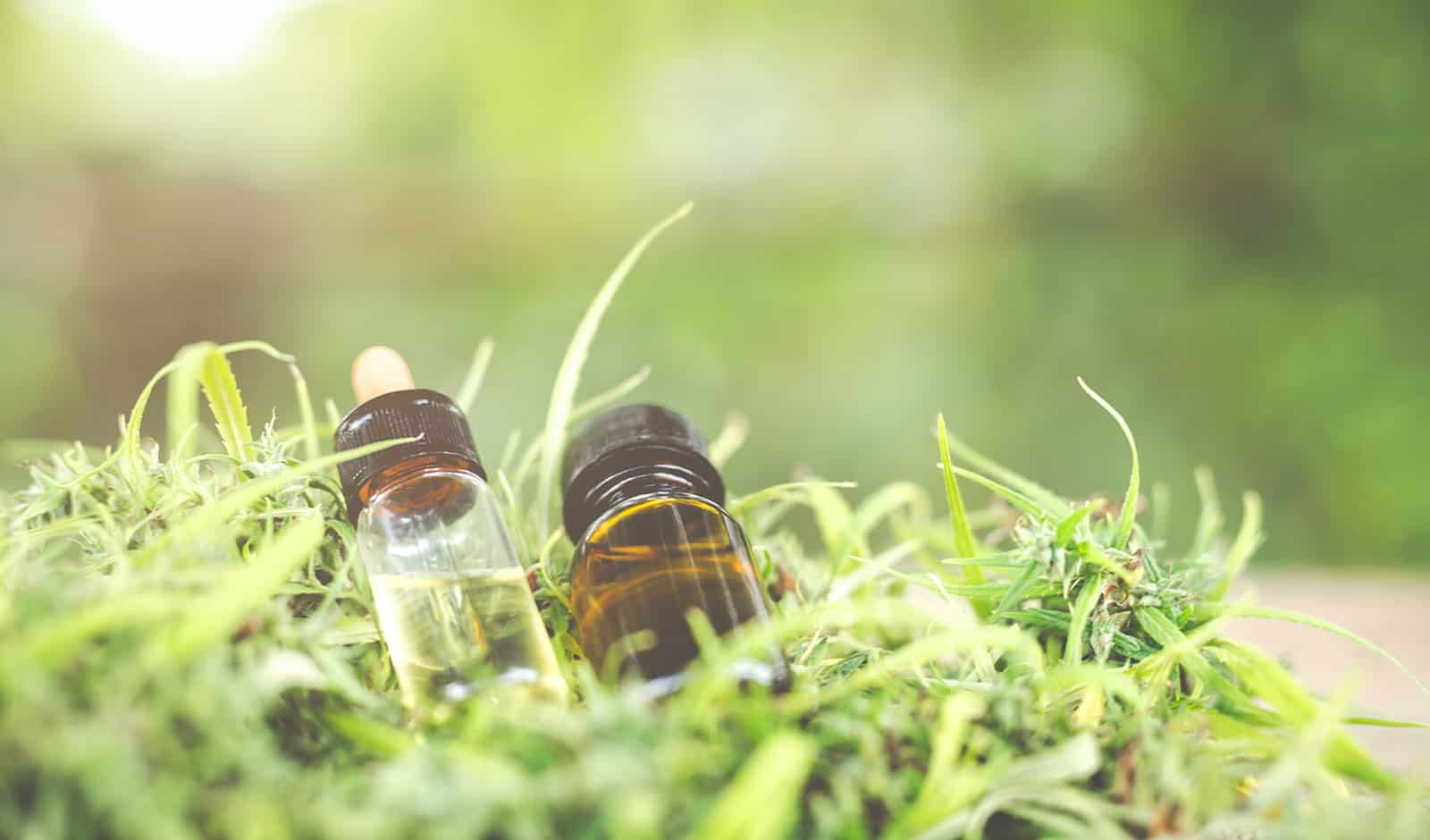 Can CBD Vape Oil Help Your Sex Drive and Improve Your Fitness?