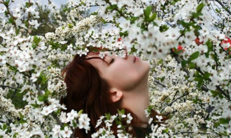 A beautiful girl enjoying the sunny weather in the middle of blooming cherry tree