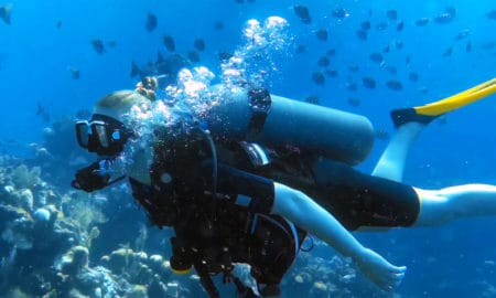 ibagari-boutique-hotel-duna-divers-main-image-scuba-diving