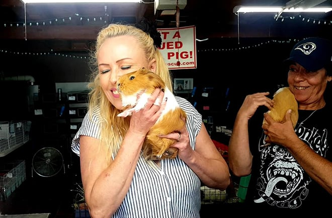 saskia-chiesa-guinea-pig-rescue-saskia-with-guinea-pigs-viva-glam-magazine